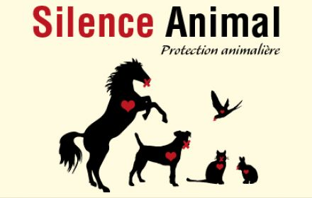 Photo profil Association Silence Animal